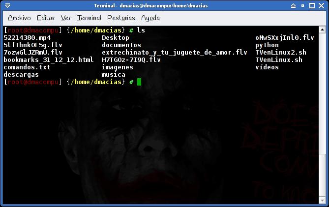 captura _terminal